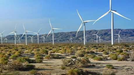 الطاقة المتجددة قد تحول الصحراء الكبرى إلى أرض خضراء!