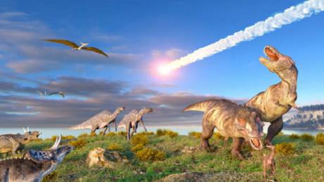 دراسة تكشف أن الانقراض الجماعي قد يحدث دون إنذار مسبق!