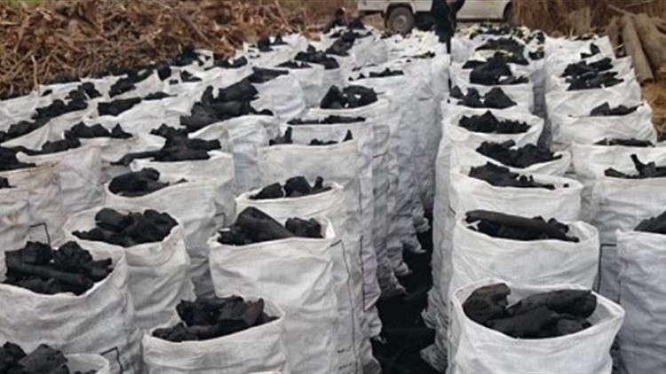 تقرير أممي يتهم إيران بتهريب فحم من الصومال تستفيد منه