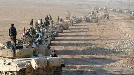 الجيش العراقي والقوات المتحالفة معه - أرشيف