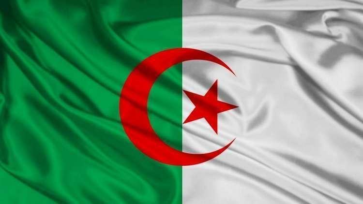 وزير جزائري: صناعة السيارات المحلية بحاجة لأكثر من 20 عاما 5bf7d91095a597ae478b45de