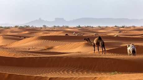 شاهد صحراء السعودية كما لم تراها من قبل!