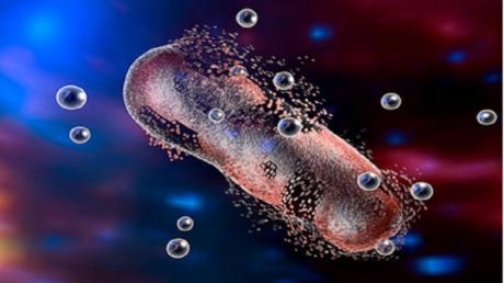 هل يكمن ينبوع الشباب في المضادات الحيوية؟