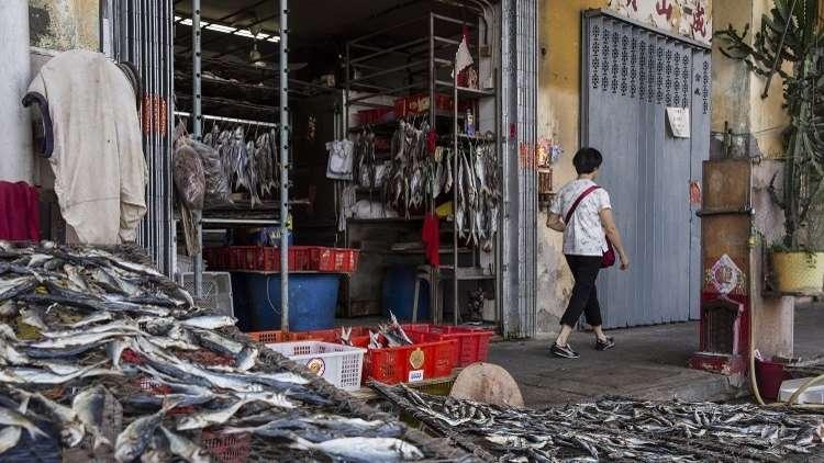 متجر لبيع الأسماك في ماكاو، 15 سبتمبر 2018