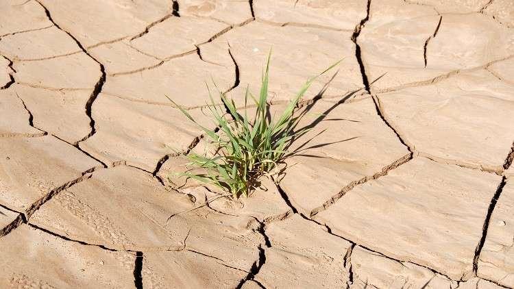 توقعات بنقص مياه الشرب في العالم