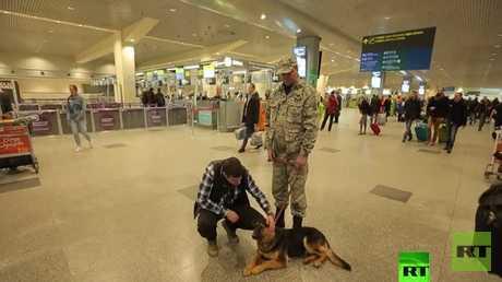 مركز الكلاب البوليسية في مطار دوموديدوفو