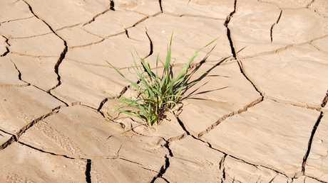 توقع بنقص مياه الشرب في العالم