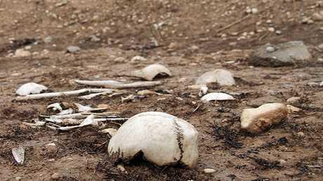 العثور على 7 مقابر جماعية في كركوك العراقية