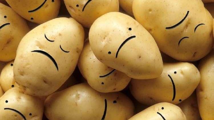 علماء: أغلبية البطاطا في العالم تعاني من