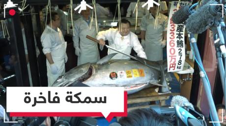 سمكة تونة بأكثر من 3 ملايين دولار