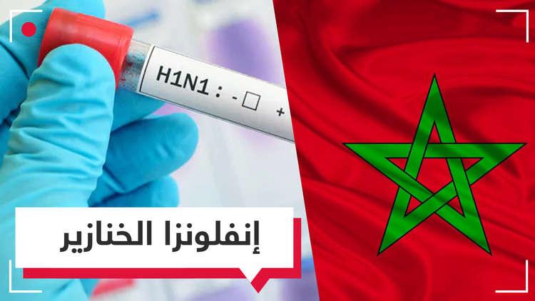 إنفلونزا الخنازير تقتل مواطنين في المغرب