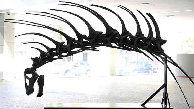 اكتشاف نوع جديد من ديناصورات عاشت منذ 140 مليون سنة
