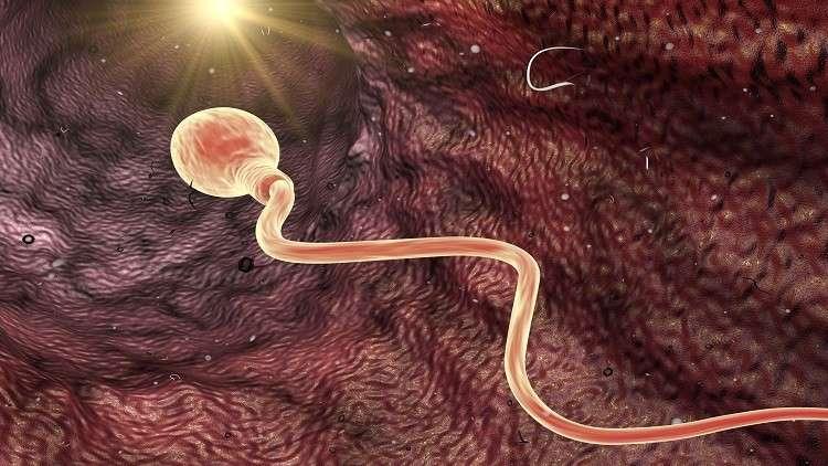 شروط يفرضها جسد المرأة على الحيوانات المنوية لحدوث التخصيب!