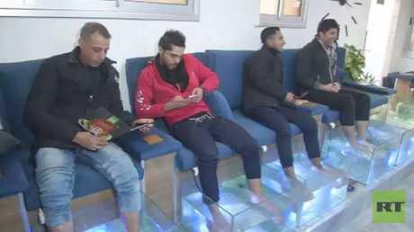 دكتور فش.. وسيلة جديدة للعلاج في غزة