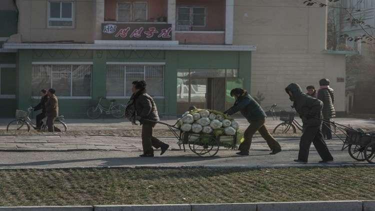 كوريا الشمالية تسجل أدنى مستوى في الإنتاج الزراعي منذ عقد