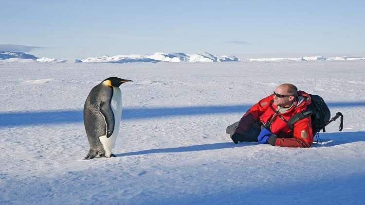 كشف غموض ظاهرة غريبة في القطب الجنوبي!