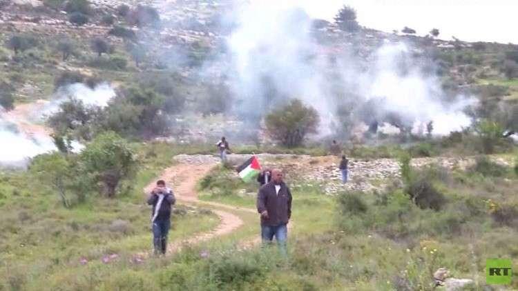 فعاليات يوم الأرض في فلسطين