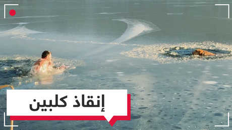 بالفيديو.. كلب وصاحبه ينقذان كلبين من الموت في بحيرة متجمدة