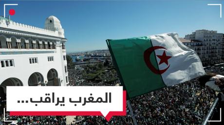 كيف تابع المغاربة احتجاجات الجزائر؟  تفاعل شعبي وصمت حكومي