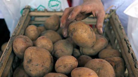 القاهرة: تركيا فتحت أسواقها أمام البطاطس المصرية