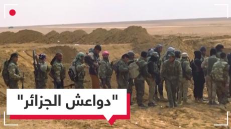 هل تسلمت الجزائر قادة في داعش ضمن 29 عنصرا تم ترحيلهم على متن طائرة أمريكية؟