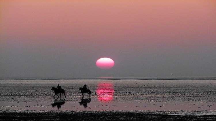 القمر الوردي وأحداث فلكية مثيرة يشهدها شهر أبريل