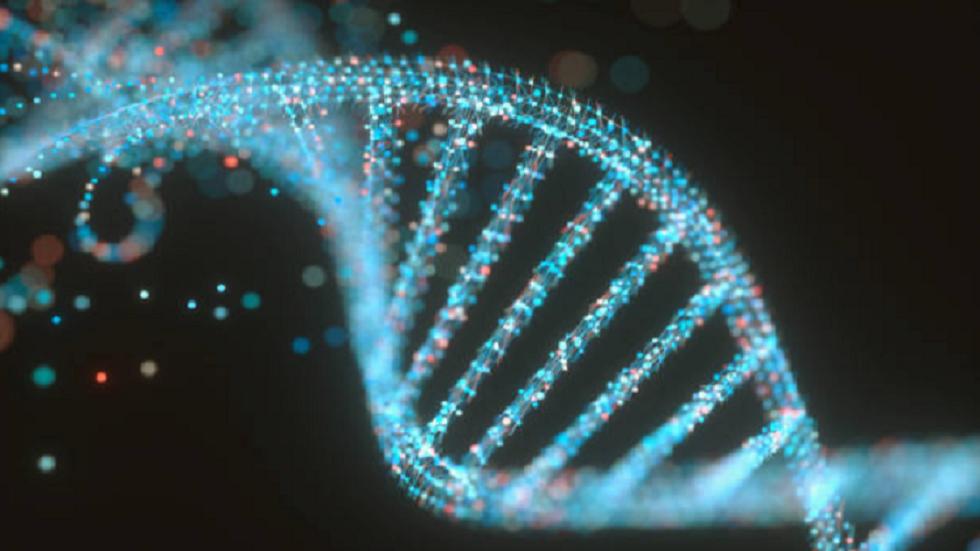 العلماء يحولون الخلايا البشرية إلى
