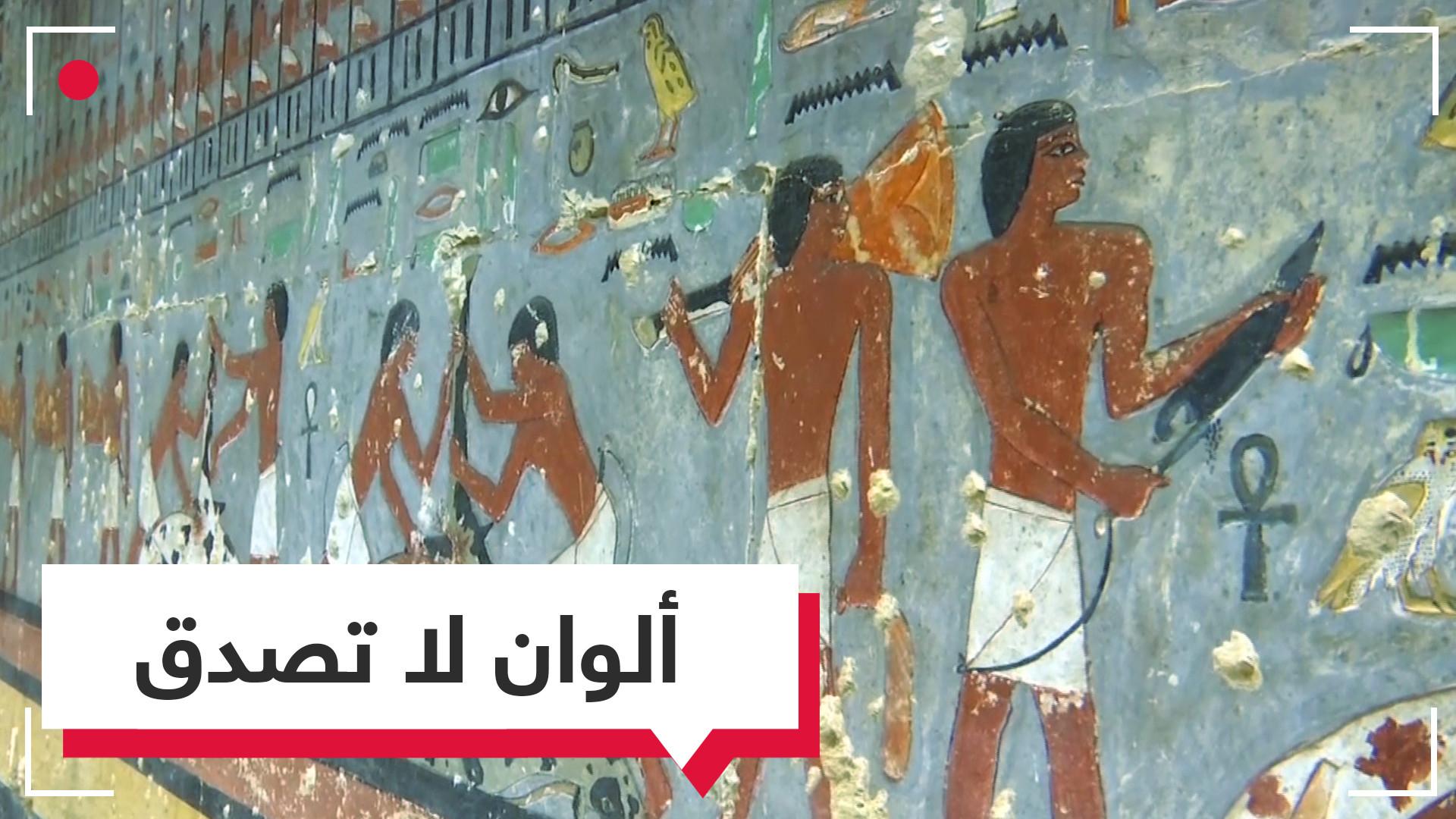 بدقة ألوانها.. مقبرة بجنوب هرم سقارة في مصر تدهش العالم