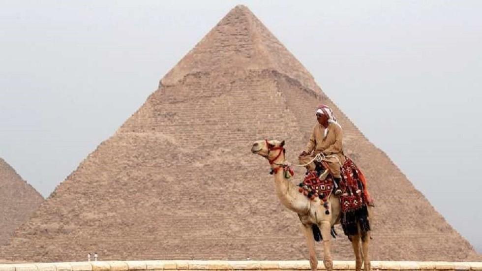 توقعات بانخفاض إنتاج مصر من القطن