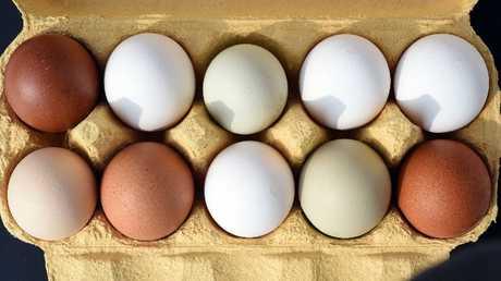 German weight-discount plan consultants defend eggs