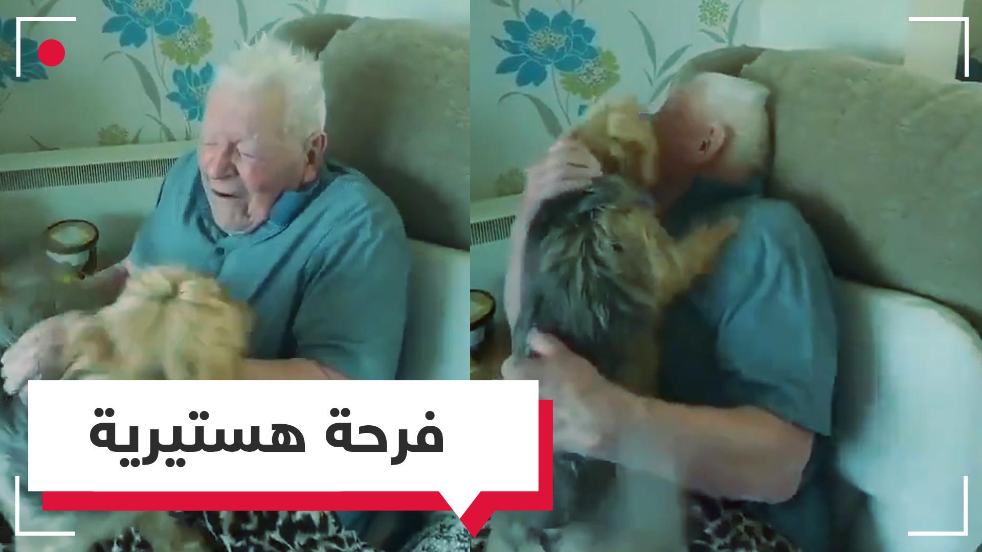 كلب وفي يُصاب