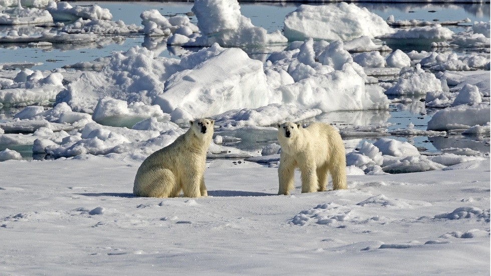 روسيا ستطلق ستة أقمار صناعية صغيرة لمراقبة القطب الشمالي