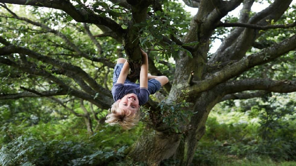 التواصل مع الطبيعة خلال الطفولة يؤثر على الصحة العقلية عند البلوغ