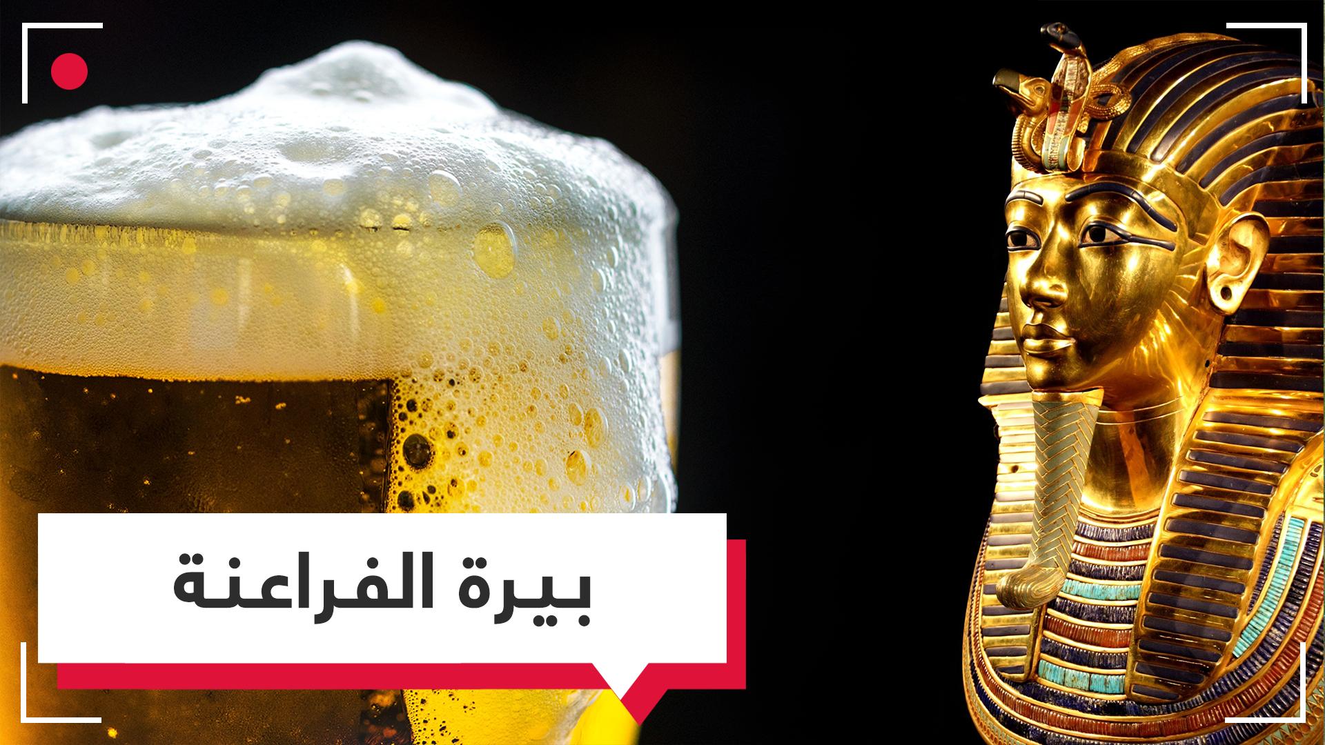بيرة الفراعنة تعود باستخدام بكتيريا منذ 5000 آلاف عام