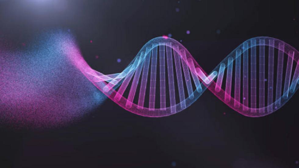 تحديد الجينات المسؤولة عن تطور الجنس البشري!