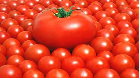 Eating tomatoes reduces the risk of developing skin cancer