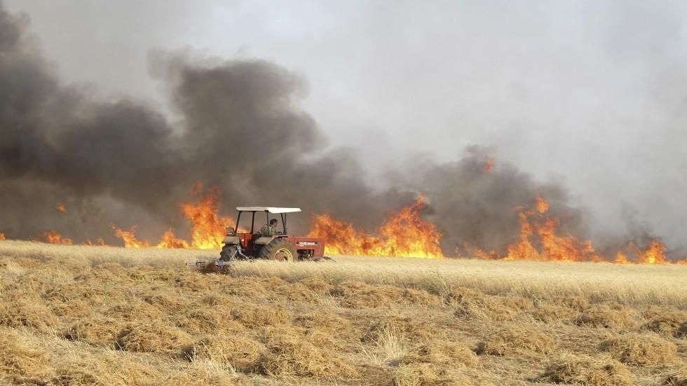 الحرائق تلتهم أحد حقول القمح شرقي سوريا