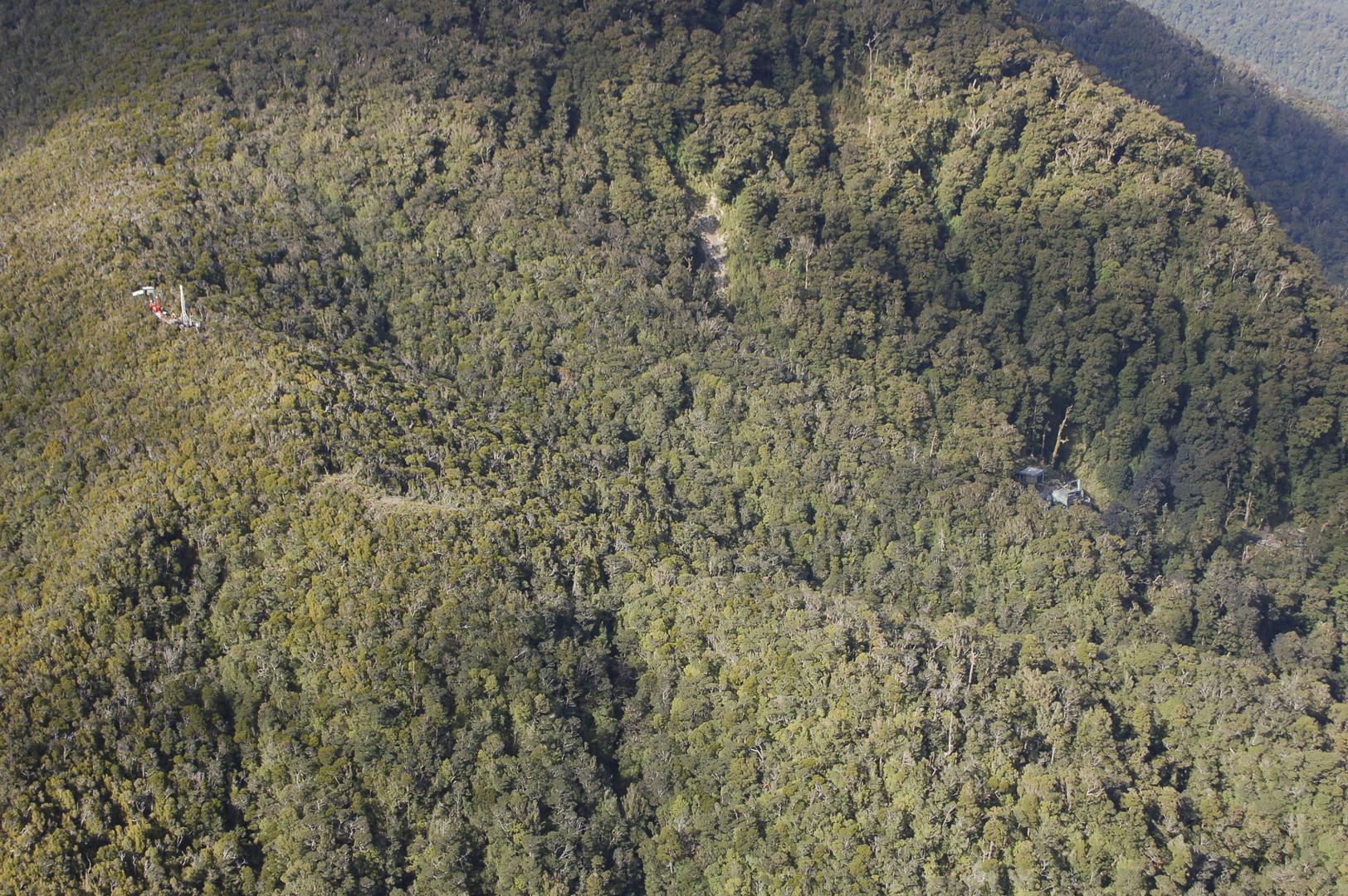 شرطة نيوزيلندا تؤكد تحطم طائرة خفيفة ومقتل طيارها
