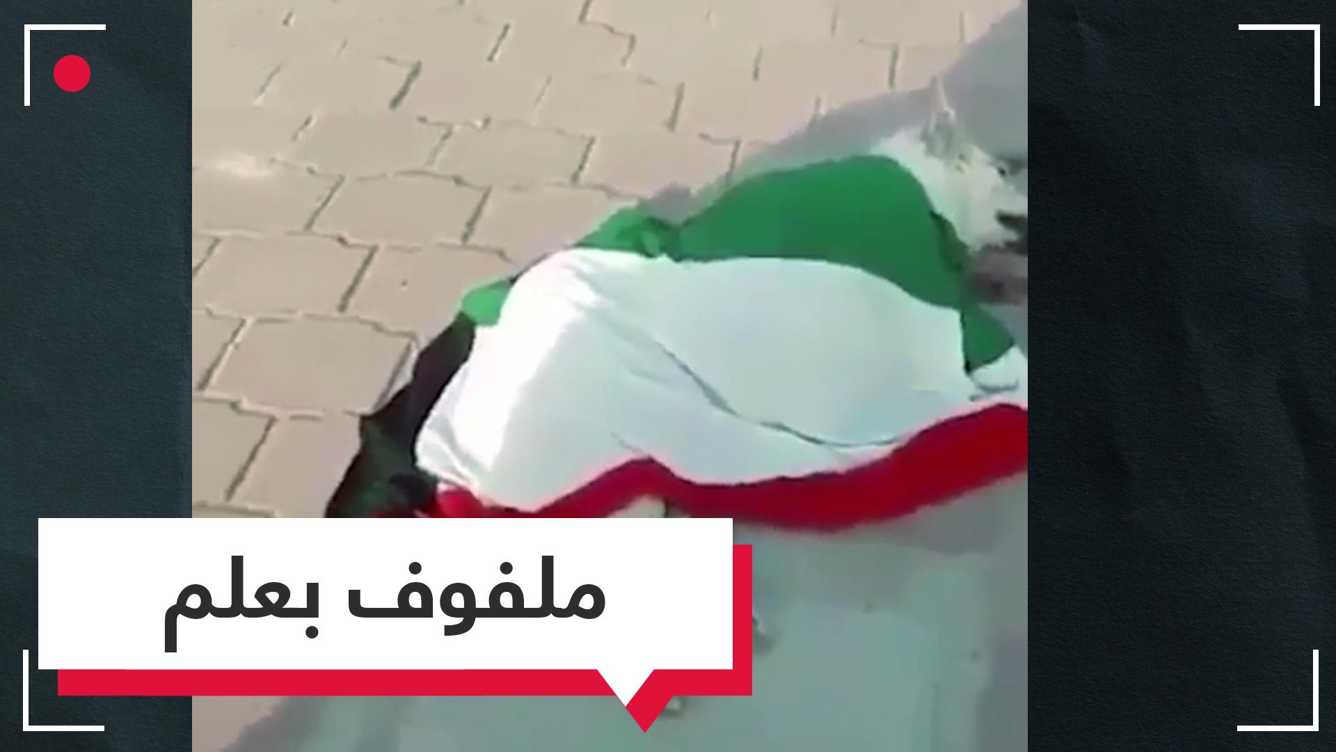 ملفوفا بالعلم.. كلب ميت يثير غضبا في الكويت