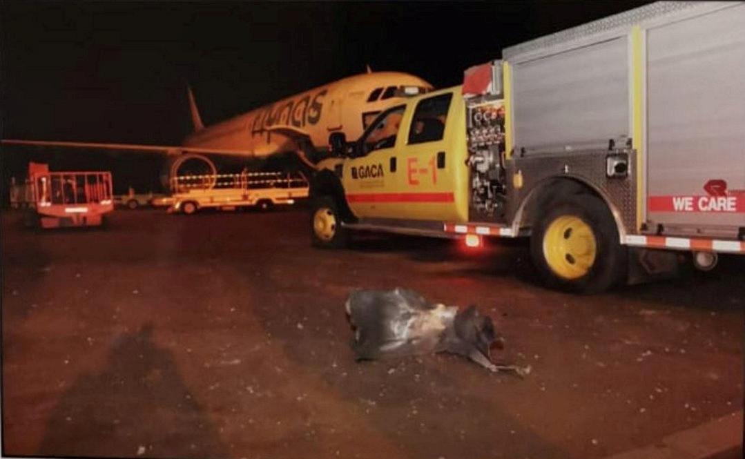 آثار هجوم للحوثيين استهدف مطار أبها الدولي جنوب السعودية يوم 12 يونيو
