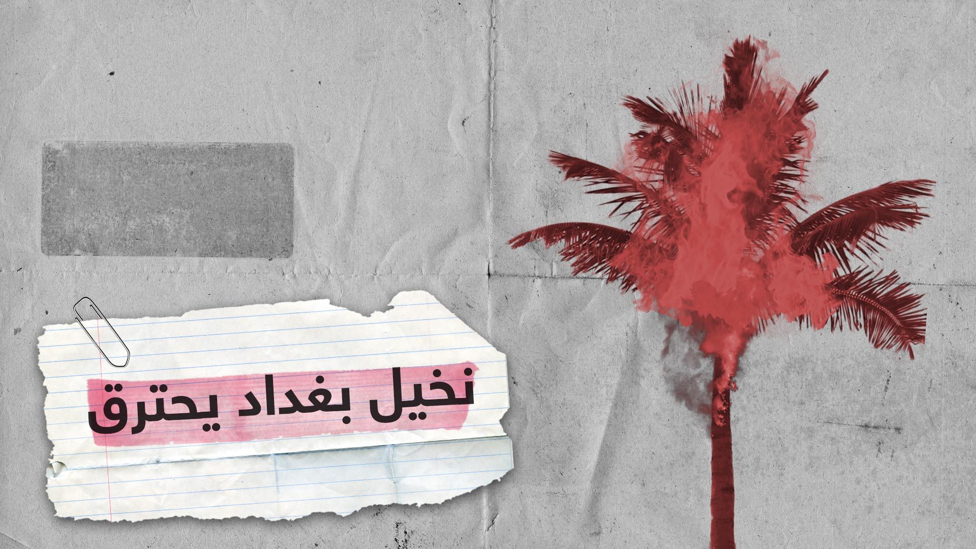 فيديو.. نخيل بغداد يحترق وسط ذهول المارة