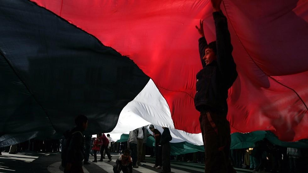 طفل مغربي يحمل علم فلسطين في احتجاجات مؤيدة لفلسطين