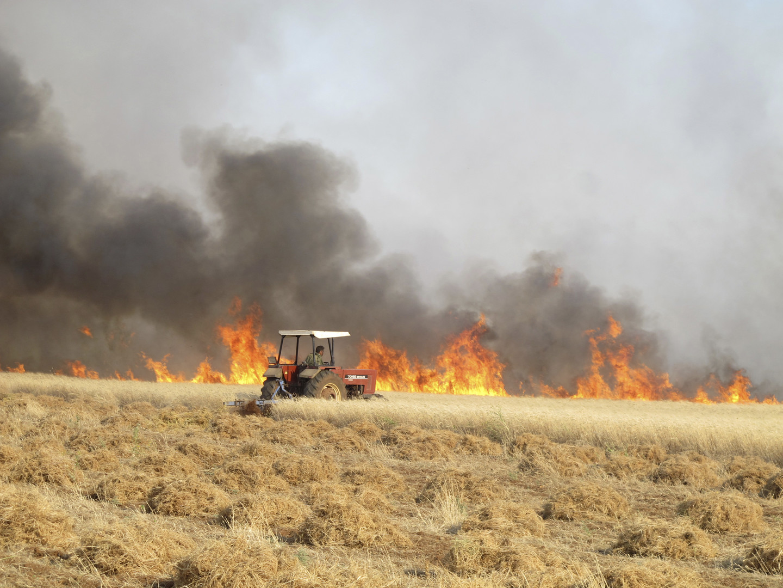 وزير سوري يكشف حجم خسائر القطاع الزراعي