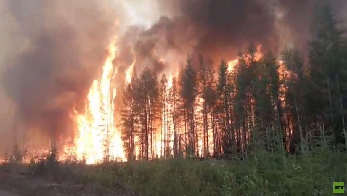 فيديو.. ياكوتيا تعاني من حرائق الغابات المرعبة