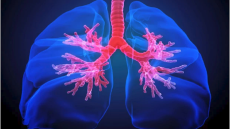 """first """"atlas"""" of human lung promises revolutionary treatment for asthma!"""