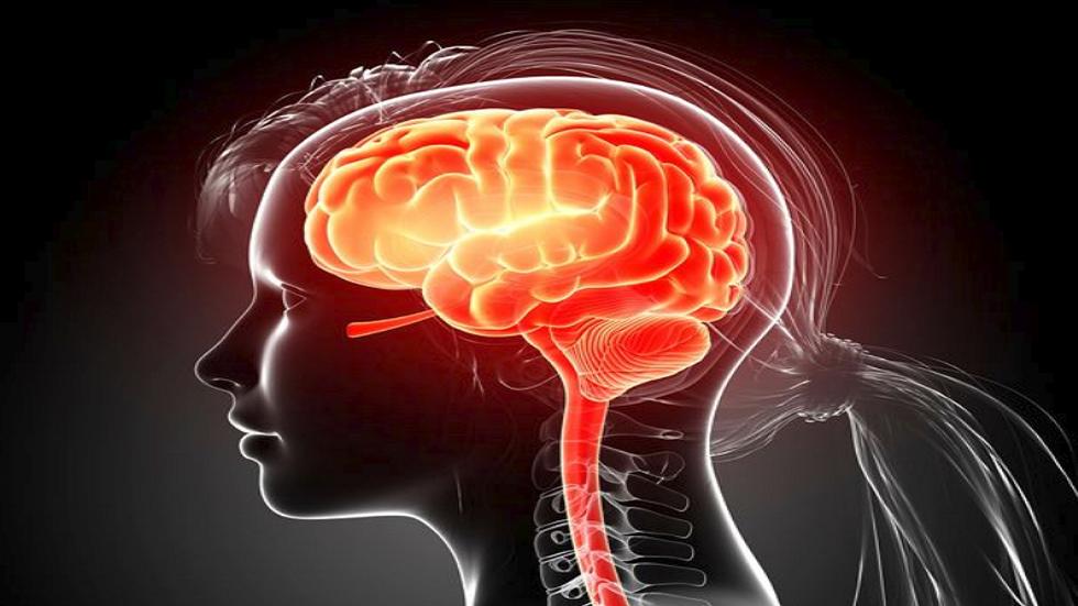 علماء يحذرون من خطر السجائر الإلكترونية على الدماغ!