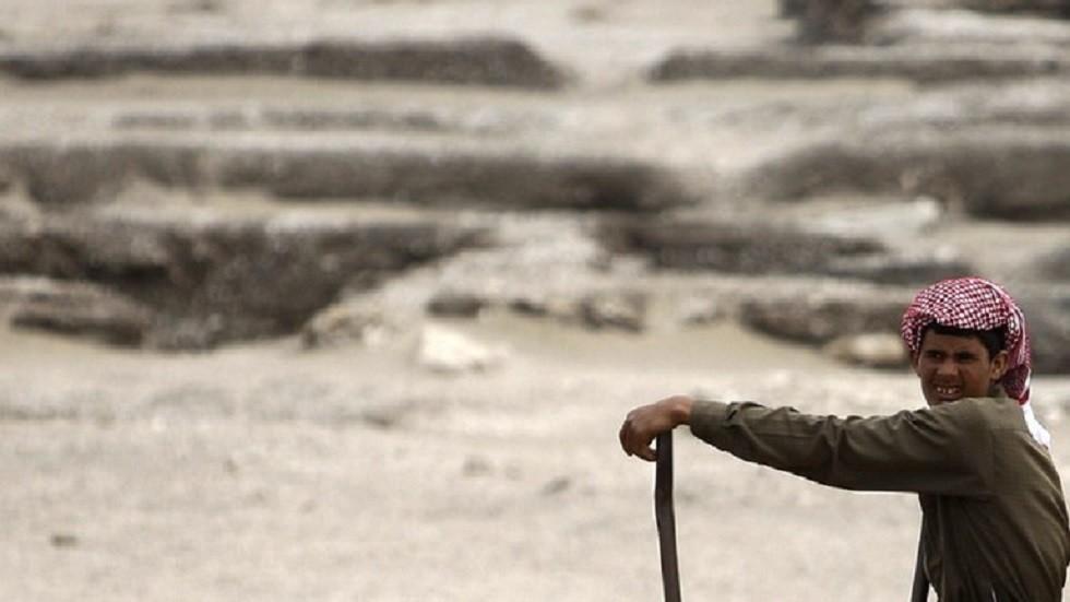 مصر تشكل لجنة تنمية زراعية متكاملة في شبه جزيرة سيناء