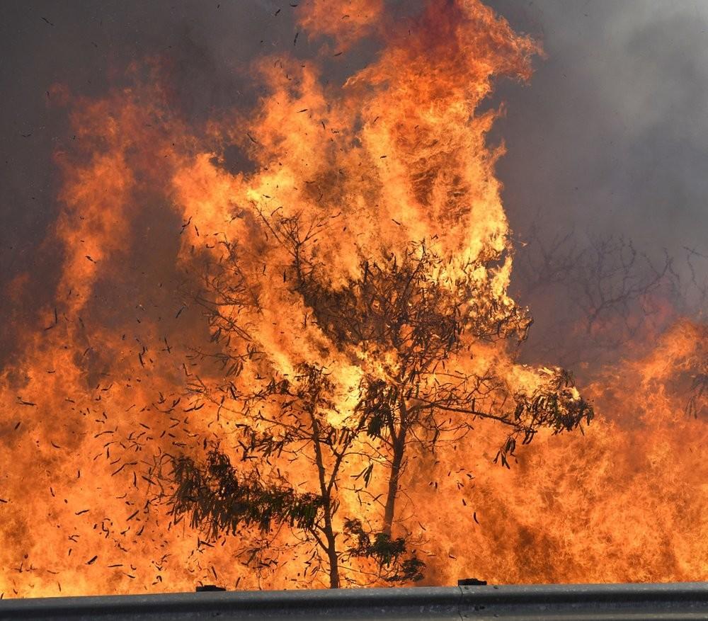إعلان حالة الطوارئ بسبب حرائق واسعة النطاق في ولاية هاواي الأمريكية