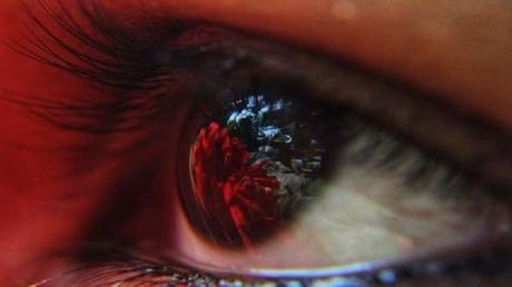 The number of blood vessels in the eye may reveal an early disease without medication