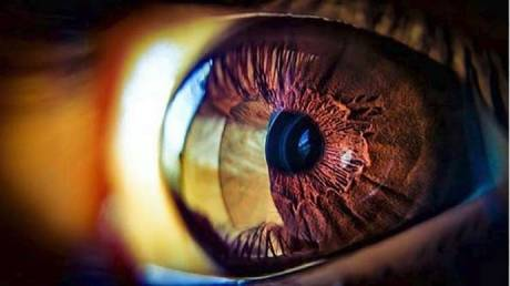 """new """"revolutionary"""" treatment may restore blindness to accidents"""